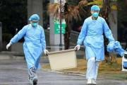 #CoronaVirus: जागतिक अर्थव्यवस्थेत मंदी येणार, पण भारत आणि चीनमध्ये जास्त फरक पडणार नाही- संयुक्त राष्ट्राचा दावा