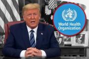 अमेरिकेने WHO बरोबरचे संबंध तोडले, दिले अधिकृत पत्र