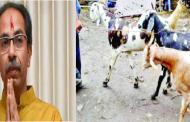'बकरी ईद' घरीच साजरी करण्याचं  मुख्यमंत्री उद्धव ठाकरे यांचं मुस्लीम बांधवांना आवाहन