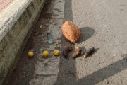 भीतीदायक : पिंपरी-चिंचवडमधील एका उड्डाणपुलावर नारळ, लिंबु आणि व्हिसकीची बाटली