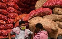 निर्यातबंदीनंतर बाजारात कृत्रिमरीत्या वाढवलेल्या कांद्याच्या भावात अचानक घसरण