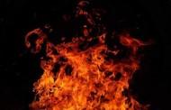 तमिळनाडूमध्ये फटाक्यांच्या कंपनीला लागलेल्या आगीत 5 जणांचा मृत्यू तर 3 जण जखमी