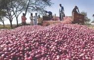 कांदा उत्पादक शेतकरी घेणार मुख्यमंत्र्यांची भेट