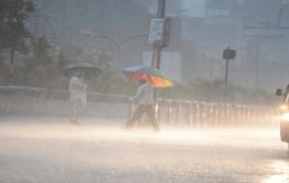 येत्या 2 ते 3 दिवसात गोवा, रत्नागिरी, सिंदुदुर्ग तसेच राज्यातील इतर ठिकाणी मध्यम ते जोरदार पाऊस बरसणार