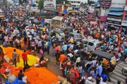 'दसऱ्याच्या मुहूर्ता'वर फुलांचे भाव कडाडले; झेंडुची सर्वाधिक मागणी