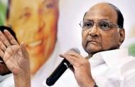 राहुल गांधींवर शरद पवारांचं मोठं वक्तव्य; म्हणाले, राष्ट्रीय नेत्याच्या रुपात 'या' गोष्टीची कमतरता