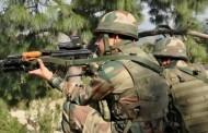 श्रीनगरमध्ये सुरक्षा दलावर दहशतवादी हल्ला, दोन जवान शहीद