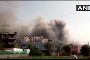 #BREAKING: सीरम इन्स्टिट्यूटच्या आग लागलेल्या इमारतीतून 5 जणांचे मृतदेह सापडले- पुणे महापौर