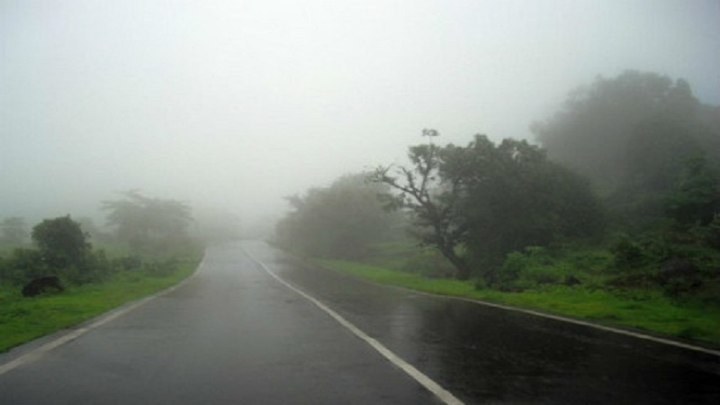 मराठवाडा वगळता राज्यात दमदार पाऊस