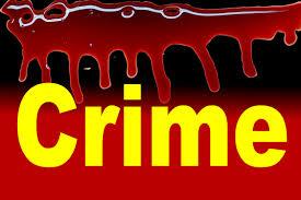 सोशल मीडियाद्वारे चालणा-या वेश्या व्यवसायाचा गुन्हे शाखेकडून पर्दाफाश