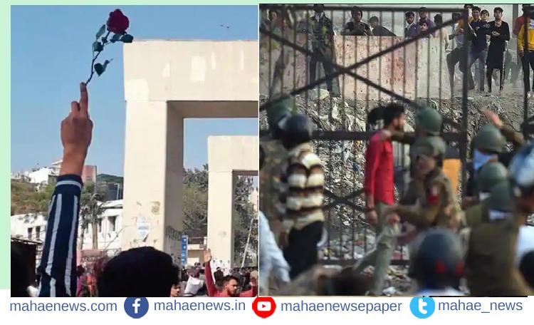 दिल्ली आंदोलन: आंदोलनालाआधी  हाती होतं गुलाबाचं फुलं नंतर आल्या हातात काठ्या, लोखंडी सळ्या, दगड, विटा ...
